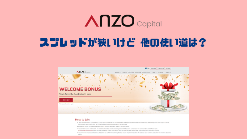 AnzoCapital Limitedの評判